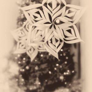 Jõulud, Jõulukaart Ja Jõulusoovid 2013