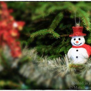 Jõulud, Jõulukaart Ja Jõulusoovid 2014