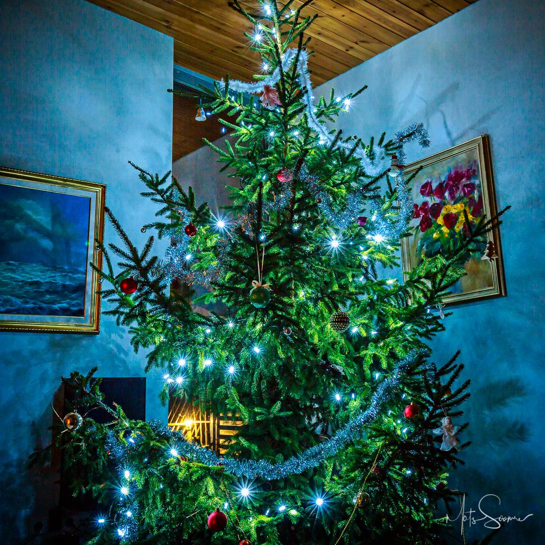 Jõulud, Jõulukaart Ja Jõulusoovid 2017
